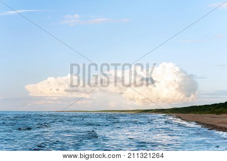 Big soft white cumulus congestus cloud above the beach on Baltic sea coast. Vibrant outdoors horizontal image with copy space. Baltic states Latvia.