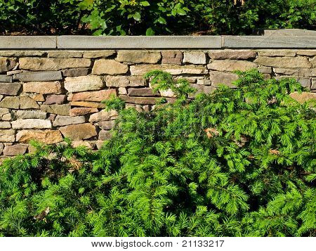 Garden With Green Bushes Near A Wall Of Rough Stone.