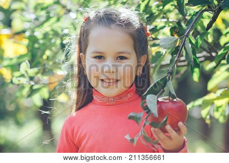 The beautiful little Asiatic girl holds a red apple in hands