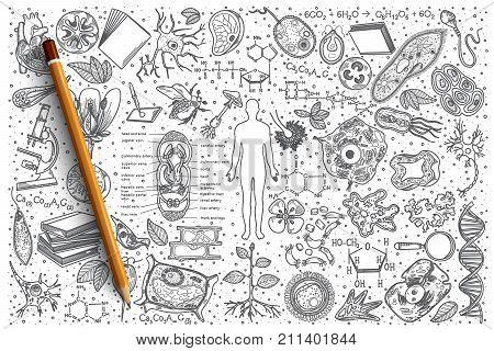 Hand drawn Biology vector doodle set background