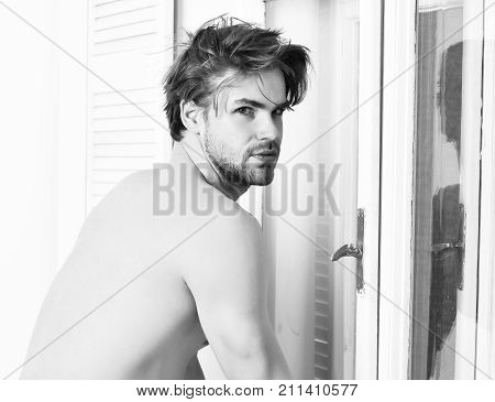 Caucasian Bearded Sexy Macho Shows Athletic Body