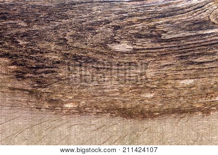 Surface Eroded By Time. Old Wood Texture Background.