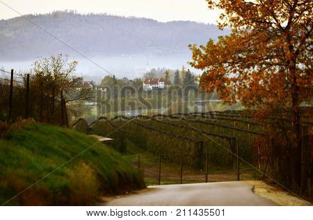 Morning near Lukovica in the central part of Slovenia