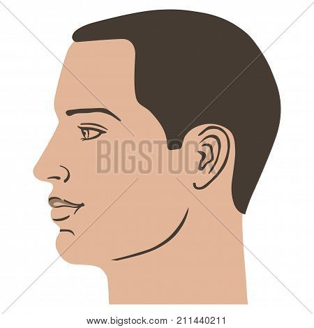 Man hairstyle head (side) vector illustration isolated on white background