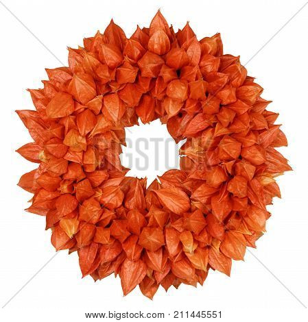 Autumnal Wreath with Physalis (Physalis alkekengi) on white