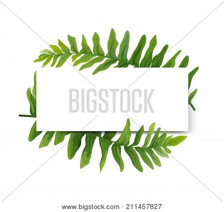 Floral modern vector vector photo free trial bigstock floral modern vector card design green polypodiophyta fern frond leaves elegant greenery forest wreath frame stopboris Images