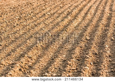 Furrows row pattern in a plowed field. Background or texture with selective focus