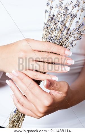 The woman shows a beautiful French manicure holds dry lavender