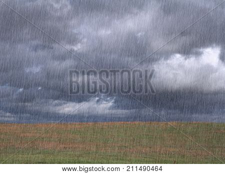 Cloudy sky with heavy rain and yellowish grass .