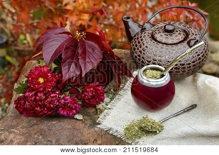 Mate tea in a calabash on a stone table in the garden against a background of autumn foliage