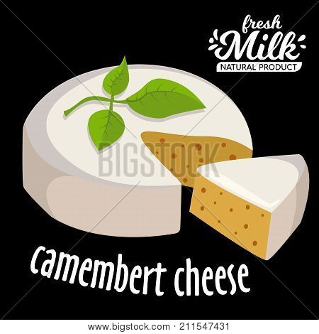 Brie Camembert cheese. Fresh Brie cheese and a slice with leaves. Italian, French cheese