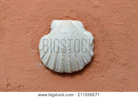 White shell of pilgrim's scallop on a red wall, symbol of the St. James's Path