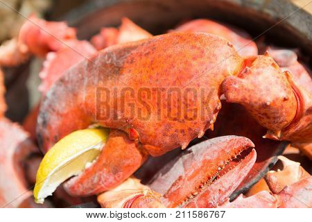 Fresh crab claws in bowl with lemon. Cooking seafood on grill