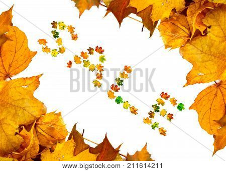 Autumn Maple Leafs Background With Word Sale
