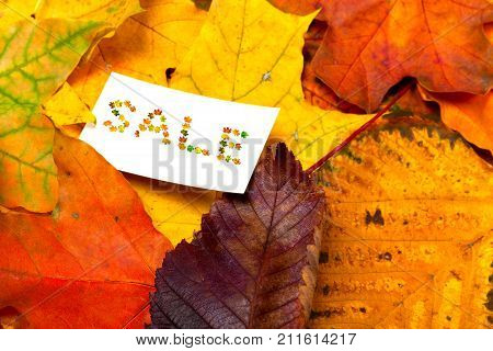 Autumn Multicolor Leafs And White Price Card With Word Sale