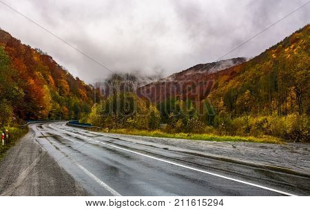 Turnaround On Wet Road Through Forest In Autumn