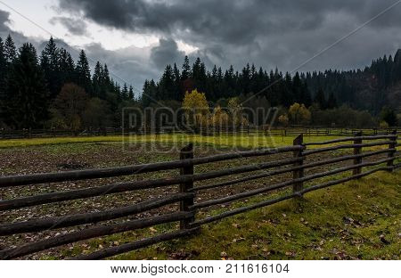 Agricultural Fields In Forest On Cloudy Day