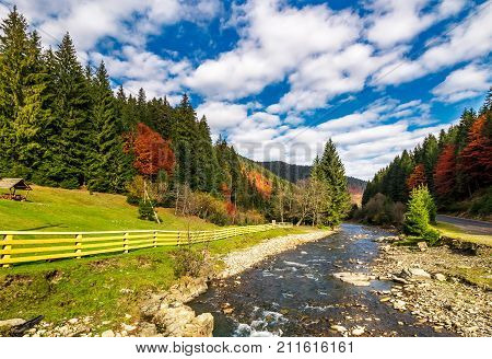 Small River In Spruce Forested Mountains