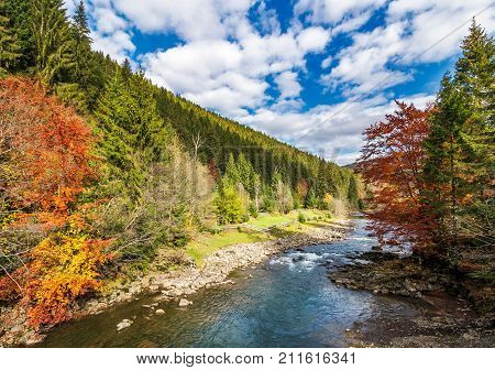 Gorgeous Autumn Landscape In Mountains