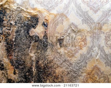 Grungy wall with shabby wallpaper closeup background. poster