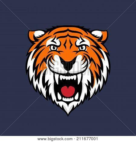 Colorful tiger head logo emblem or icon. Stock vector illustration.