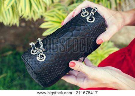 Closeup woman hands with fashion luxury snakeskin python handbag. Outdoors.