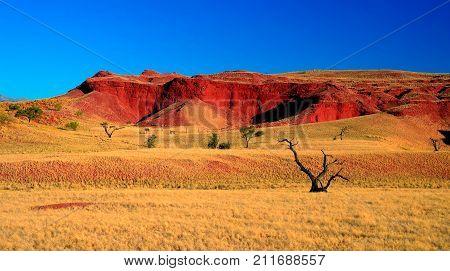 Petrified dunes at the sunset in Namib desert namibia