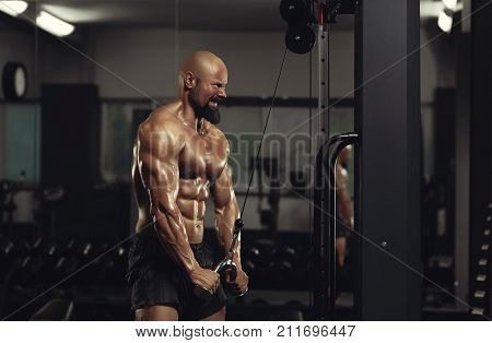 hot of a bearded bald male bodybuilder with stunning strong ripped torso doing tricep pushdowns at the gym arms sexy hot stunning perfect flawless masculine strong brutal energetic concept. poster