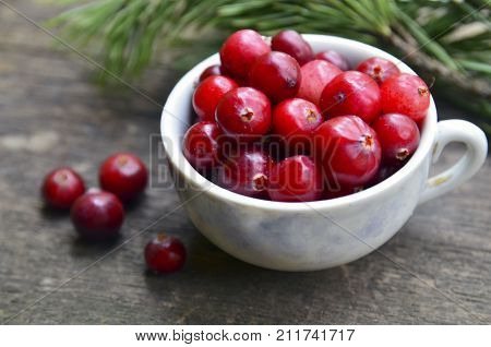 Fresh red organic Cranberries (Cowberry,Lingonberry) in a vintage porcelain cup on a rustic table.Cranberry on wooden background.Selective focus.