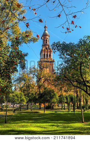 View of the Tower on Plaza Espana from the Park of Maria Luisa (Parque de Maria Luisa). Seville (Sevilla) Andalusia Spain.