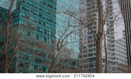 View of offices in modern building and leafless tress.