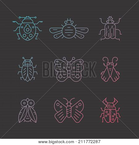 Vector collection of insects thin line icons. Bug symbol colored with pink to blue gradient. Each bug is isolated and easy to use for your design.