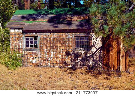 Abandoned cottage surrounded by a pine forest taken in a forgotten landscape