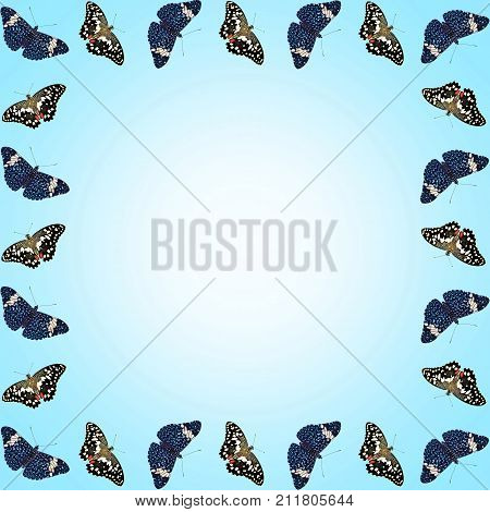 A postcard with free space for text framed with isolated butterflies on blue gradient background. Two butterflies lime swallowtail and red cracker alter to fetch out the copy space in the middle
