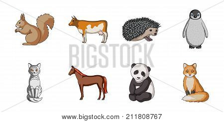 Realistic animals icons in set collection for design. Wild and domestic animals vector symbol stock  illustration.