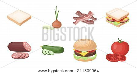 Burger and ingredients icons in set collection for design. Burger cooking vector symbol stock  illustration.