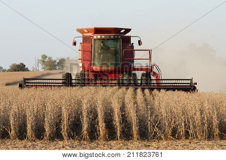 Lowry City Missouri 10/13/2017 Farmer in a Case Combine Harvester harvesting soybean out of a field
