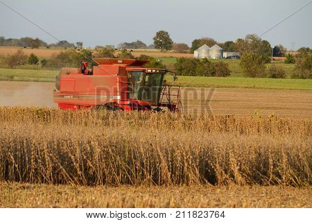 Lowry City Missouri 10/13/2017 Farmer in a Case Combine Harvester harvesting soybean out of a field while on the phone