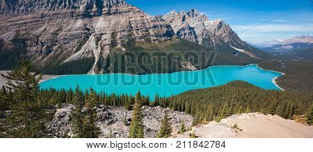 Peyto Lake is a lake with unusual color because of the sediments and mineral in its water