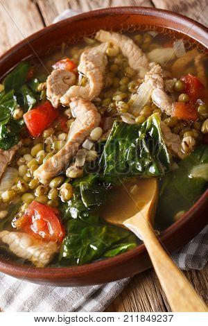 Filipino Mungo Guisado (mung Bean Soup) Close-up In A Bowl. Vertical