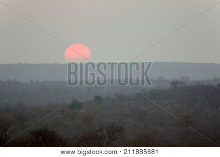 Sunset in the African savanna in Zimbabwe. Evening twilight in Africa.