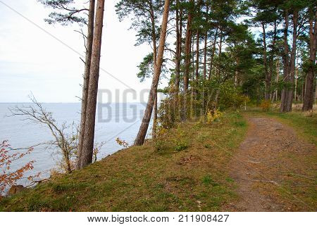 Coastal footpath by fall season at the swedish island Oland