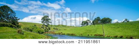 Green Grass Field In The Countryside Landscape