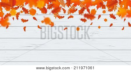 Autumn Leaf Fall Foliage Pattern Autumanl Falling Leaves On Vector Wooden Background