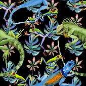 Exotic iguana pattern in a watercolor style. Full name of the reptilian: iguana. Aquarelle exotic reptilian for background, texture, wrapper pattern or tattoo. poster