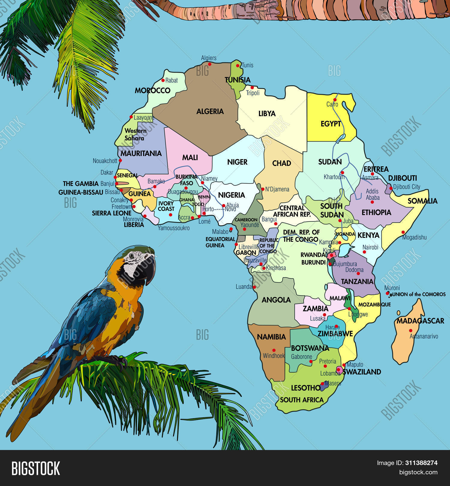 Africa Detailed Map.Highly Detailed Map Vector Photo Free Trial Bigstock