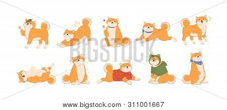 Bundle Of Cute Kawaii Dog Of Japanese Breed Isolated On White Background. Collection Of Adorable Shi