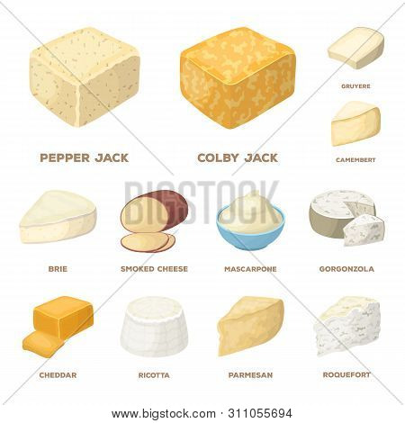 Different Kind Of Cheese Cartoon Icons In Set Collection For Design.milk Product Cheese Bitmap Symbo