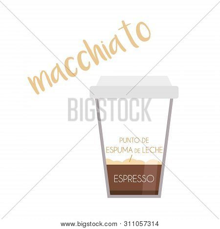 Vector Illustration Of A Macchiato Coffee Cup Icon With Its Preparation And Proportions And Names In