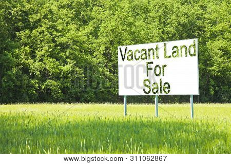 Advertising Billboard Immersed In A Rural Scene With Vacant Land For Sale Written On It - Image With